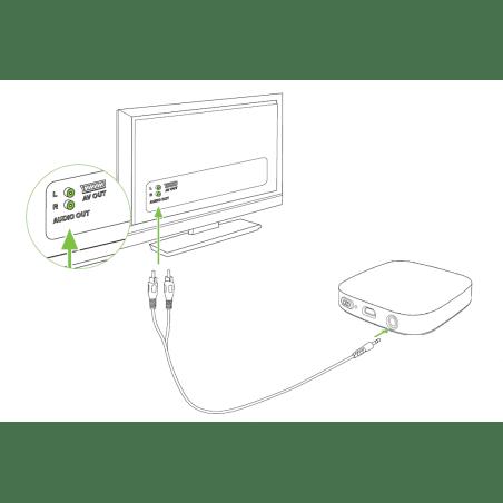 TV Connector Phonak